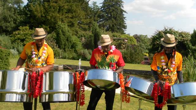 Steel Drum Band - Platinum Entertainment Agency