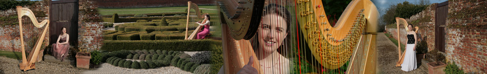 Kent Harpist Anna performs at Weddings, Corporate Events and Parties.